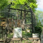 Salzburg Zoo, White-handed or lar gibbon's old-fashioned cage