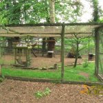 New Forest Wildlife Park, One of the Scottish wildcat 'cages'
