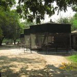 Delhi Zoo, National Zoological Park, Small predator cages