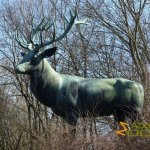 Berlin Tierpark, Red deer (Cervus elaphus) by Johann Darsow - 1937