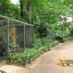 Leipzig Zoo, Row of aviaries with indigenous owls at the future South America theme world