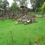Port Lympne Wild Animal Park, Western lowland gorilla enclosure, outdoors