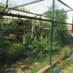 Athens Zoo, Squirrel monkey enclosure