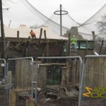 London Zoo, Tiger Territory - work in progress, January 2013