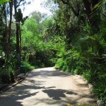 Los Angeles Zoo and Botanical Gardens, Slightly sloping uphill footpath