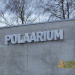 Tallinn Zoo, Brand new polar bear exhibit, opened October 2017