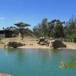 San Diego Zoo, At one end of the large elongated elephant enclosure