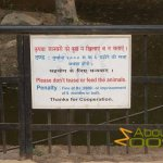 Delhi Zoo, National Zoological Park,