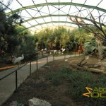 Athens Zoo, African bird walk-through enclosure