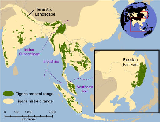 Tiger range countries map