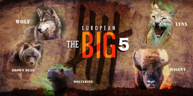 Europe has got its own Big Five now!