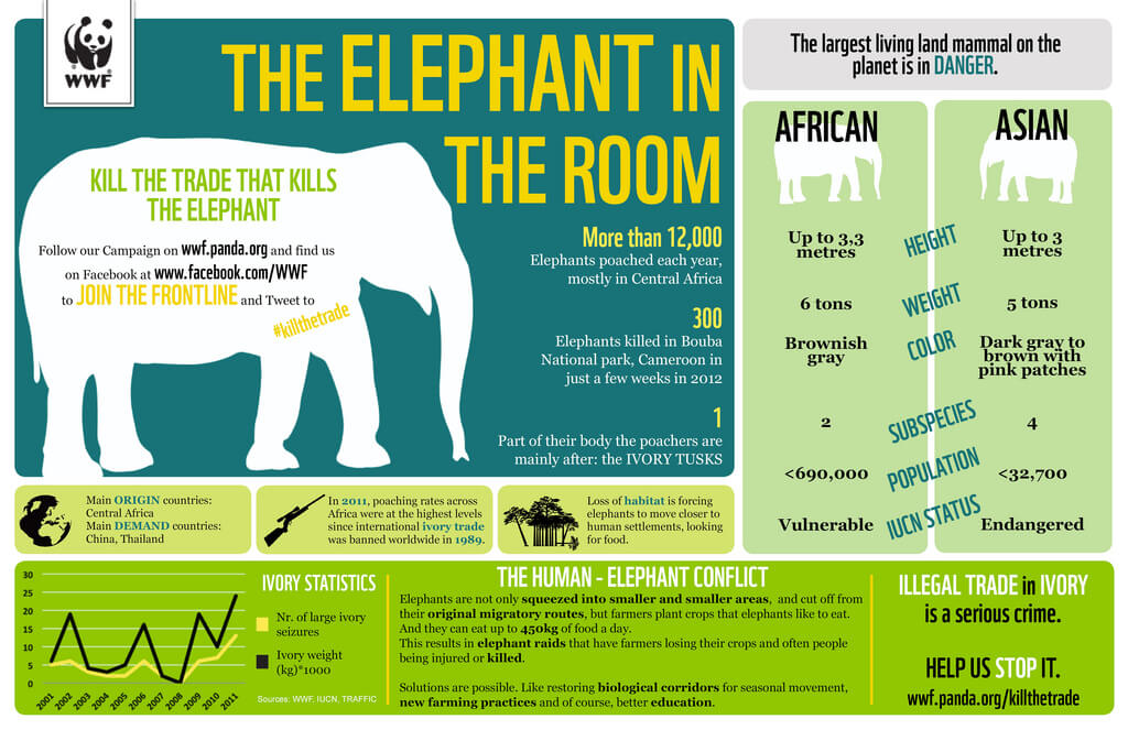 Elephant threat infographic