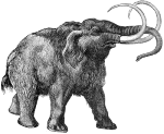 Mammoths killed by global warming, not ice age!