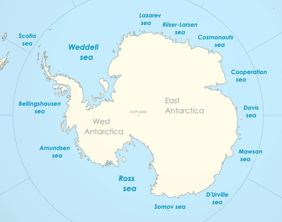 World's largest marine protected area declared in Antarctica's Ross Sea