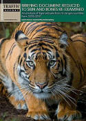 New report finds no slow down in tiger trafficking