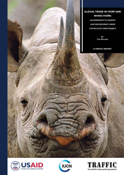 New report identifies actions needed to curtail illegal ivory and rhino horn trafficking