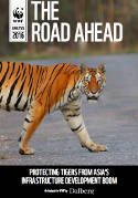 Asian infrastructure boom could be end of the road for tigers