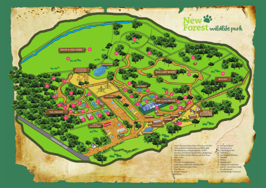 New Forest Wildlife Park map 2014