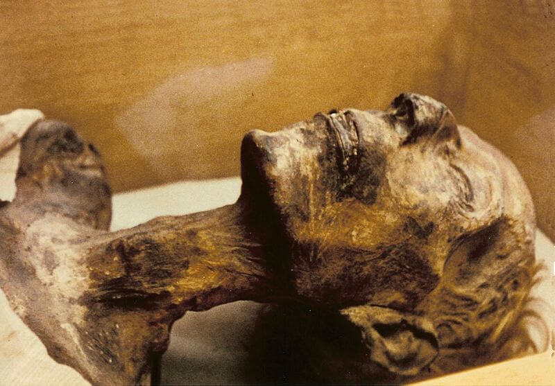 mummy Ramesses II