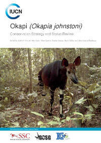 Global plan aims to save elusive okapi from extinction