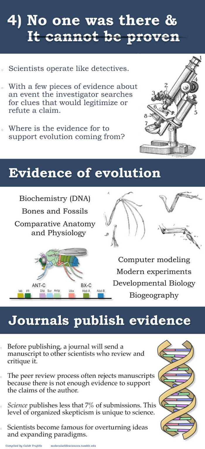 evolution infographic5