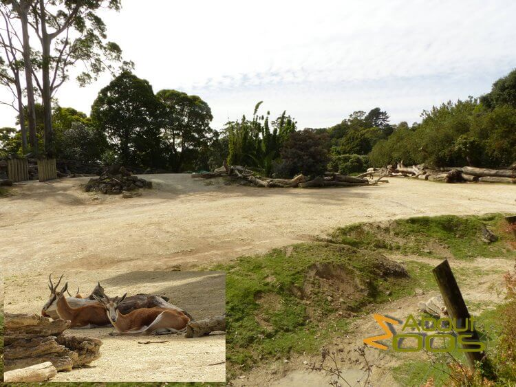 Auckland Zoo | About Zoos