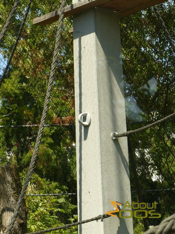 pole with climbing hold
