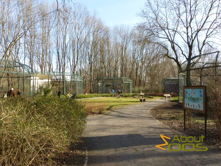 raptor aviaries