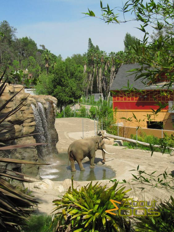 Los Angeles Zoo and Botanical Gardens | About Zoos