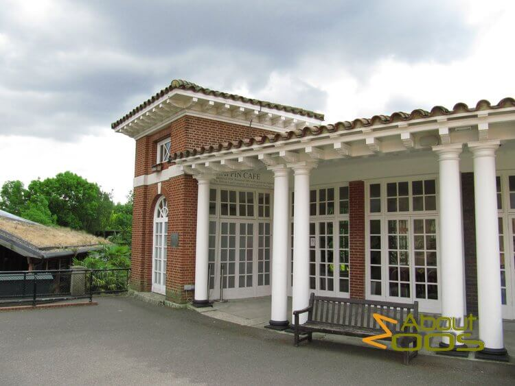 Mappin Cafe in London Zoo