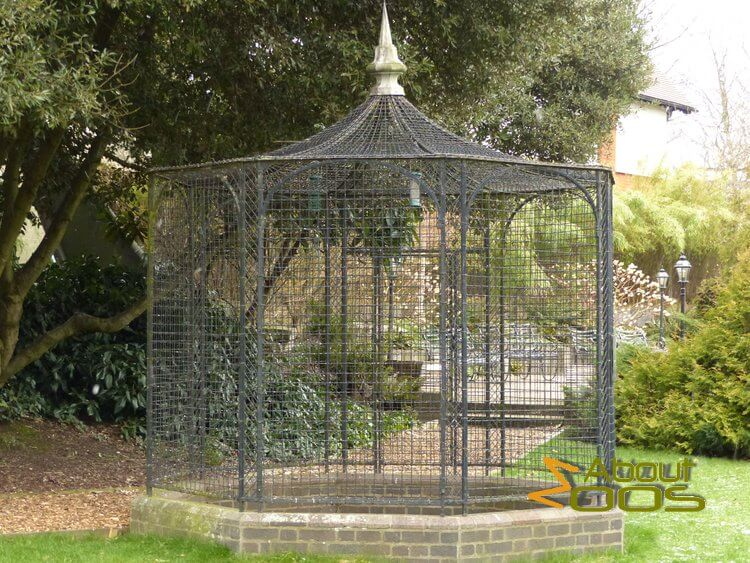 Raven's Cage in London Zoo