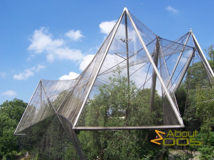 Snowdon Aviary in London Zoo