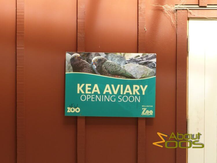 new kea aviary under construction at Wellington Zoo